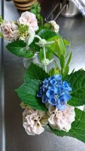 我が家の花①