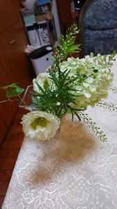 綺麗な花①
