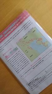 桜ライン②